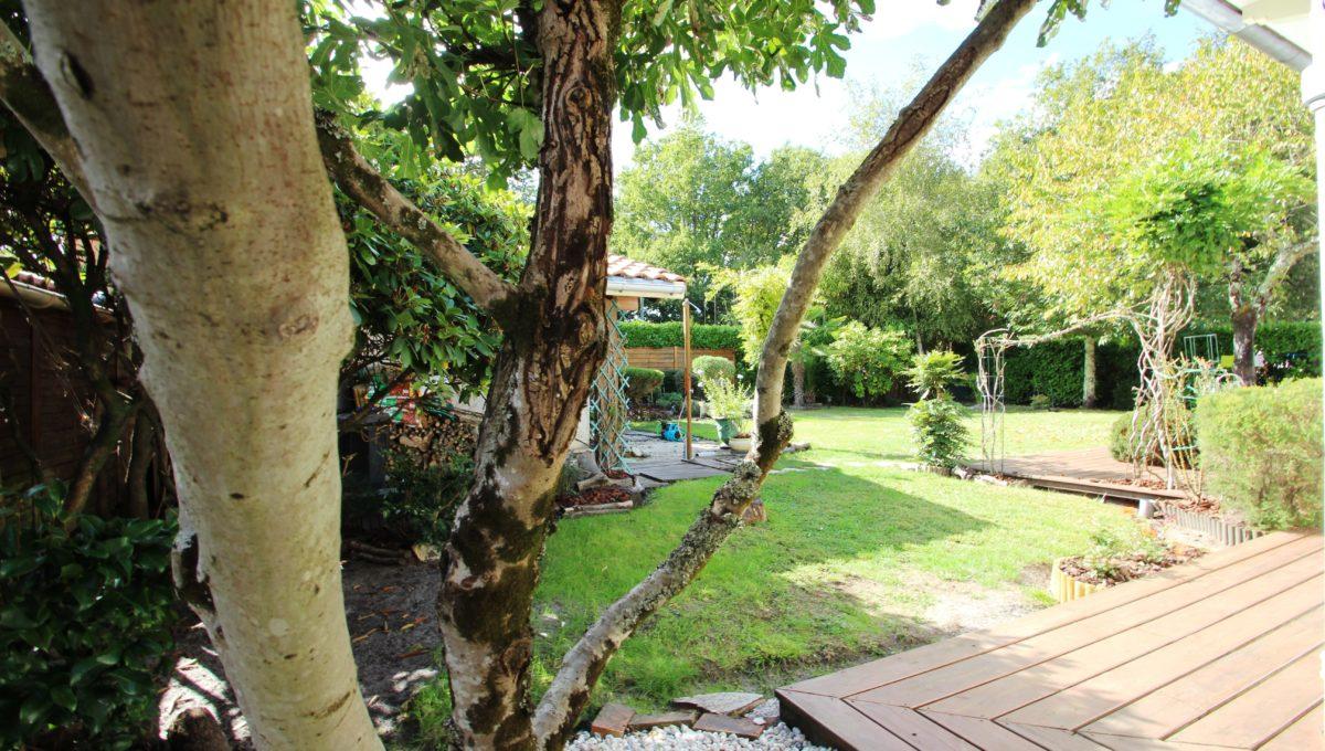 Maison à vendre 3 chambres à Cestas